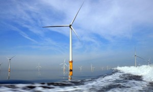Offshore wind farms are good for wildlife, say researchers