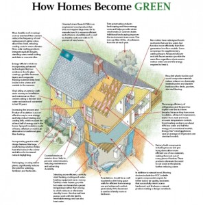 5 best ways to green your house that you didn't try till now