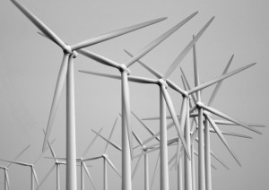 Cooperative Wind Farm Ownership Beats NIMBYism