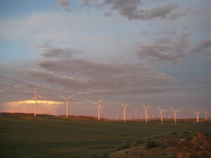 Five US States Now Get 20 Of Their Electricity From Wind Power