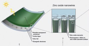 Green solar cell is made from plants