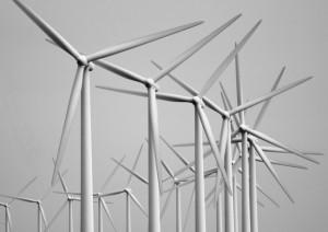 Cooperative Wind Farm Ownership Beats NIMBYism