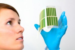 New Organic Solar Cell Efficiency Record Obtained by Heliatek