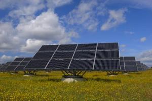 Solar Panels in Field, Bavaria, Germany